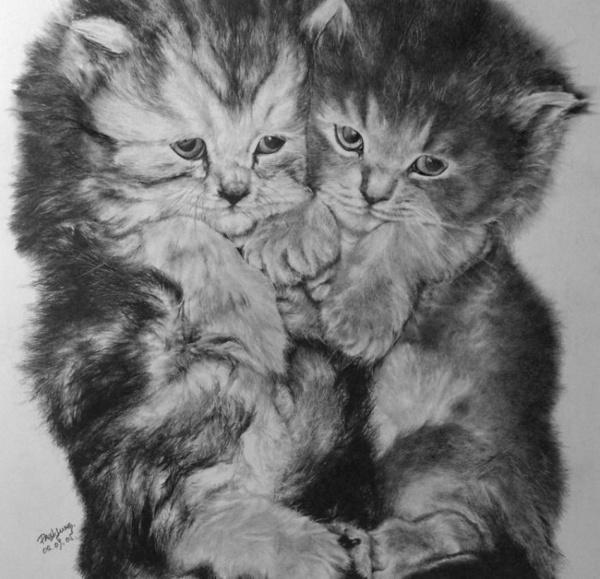 Рисунки карандашом. Часть 2 (183 фото)