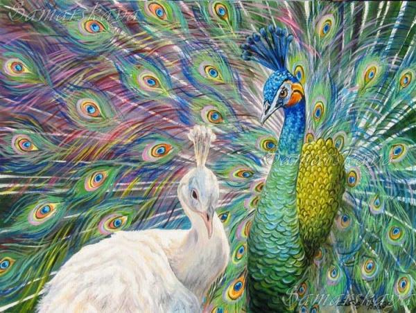 Животный мир художницы Самарской Елены (30 фото)