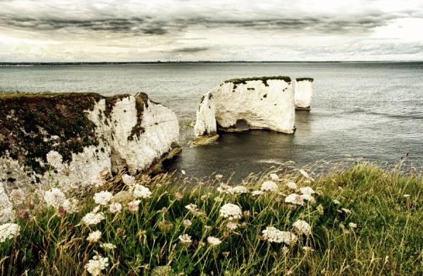 Мир в Фотографии - World In Photo 970 (100 фото)