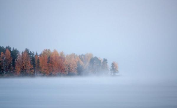 Мир в Фотографии - World In Photo 972 (100 фото)