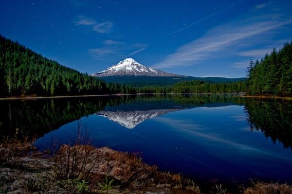 Мир в Фотографии - World In Photo 973 (100 фото)