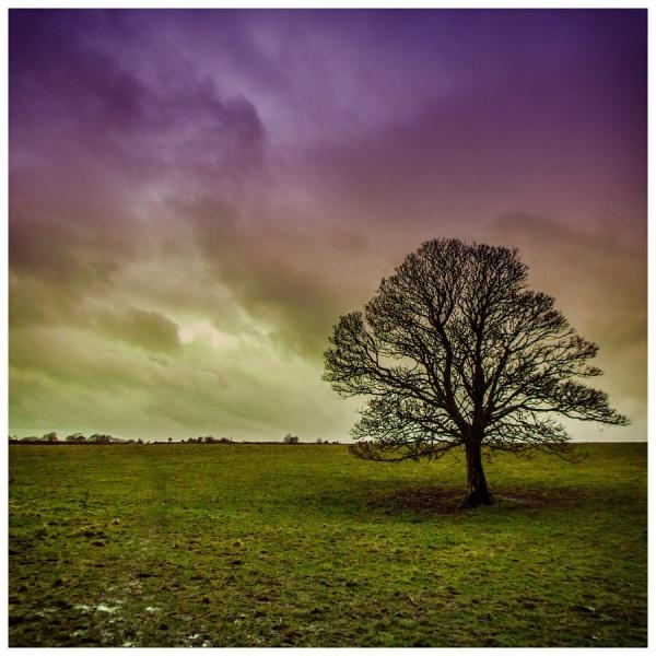 Мир в Фотографии - World In Photo 980 (100 фото)
