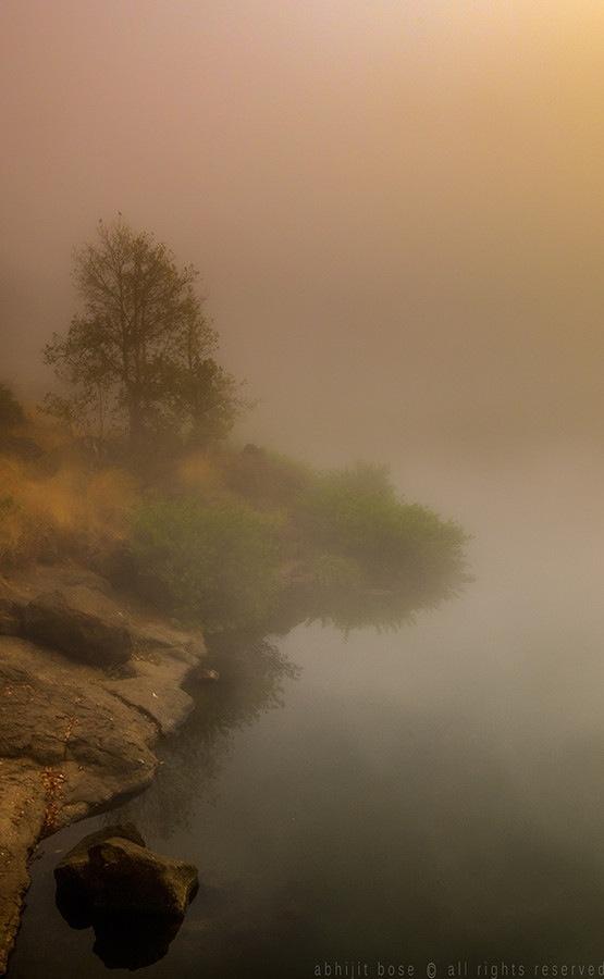 Мир в Фотографии - World In Photo 982 (100 фото)