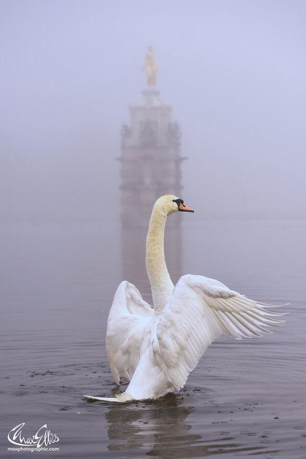 Мир в Фотографии - World In Photo 984 (100 фото)