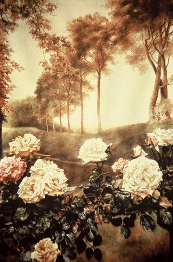 Американский художник Вернер Виллис (79 фото)