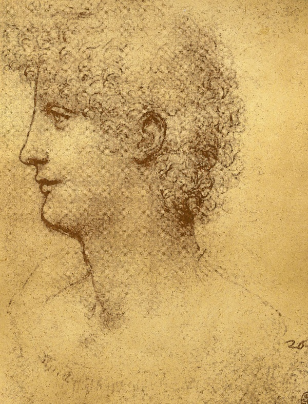 Леонардо да Винчи: художник, инженер, исследователь   Leonardo da Vinci: artist, engineer, researcher  (30 фото) (1 часть)
