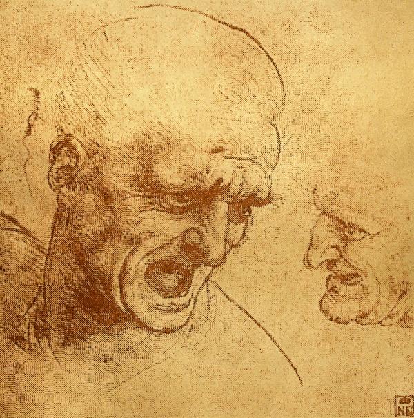 Леонардо да Винчи: художник, инженер, исследователь | Leonardo da Vinci: artist, engineer, researcher (24 фото) (2 часть)