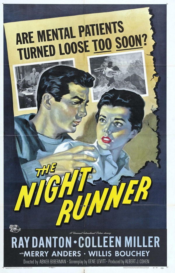 Film Noir Movie Posters Collection 1 (504 фото)