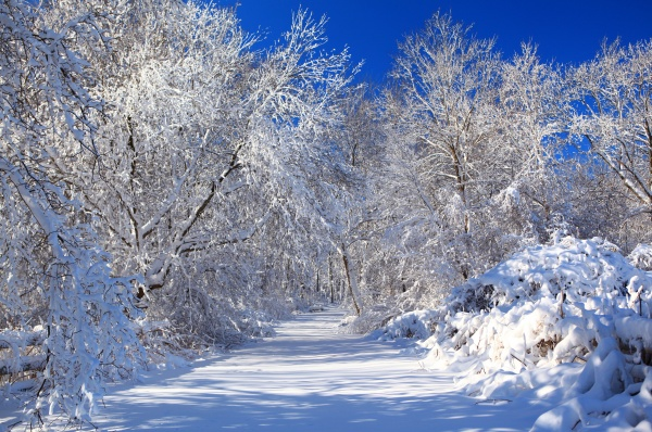 Фотоподбоpкa с крacивыми зимними пейзажами (157) (136 фото)