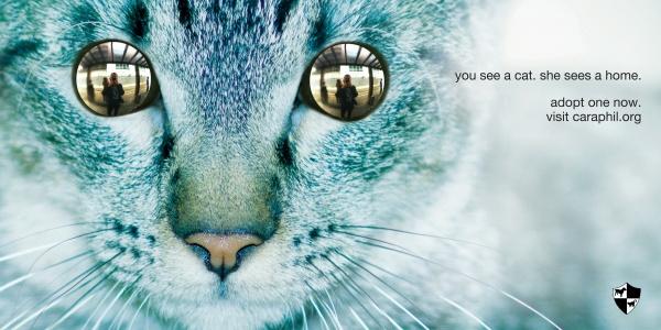 Современная реклама: MIX#141 (100 фото)
