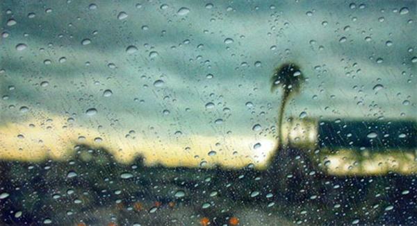 Дождливый гиперреализм Элизабет Паттерсон (48 фото)