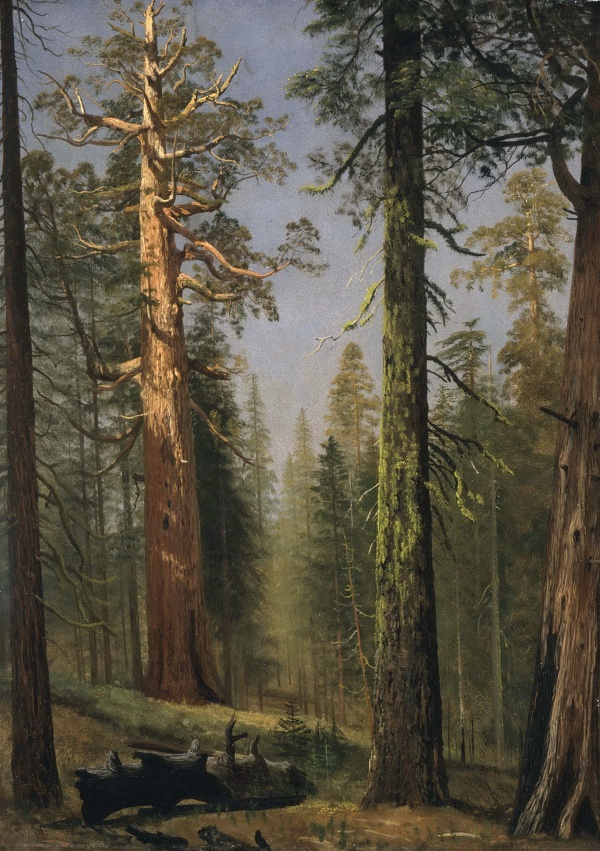 Подборка репродукций картин из галереи LACMA Лос-Анджелес (часть 2) (90 фото)