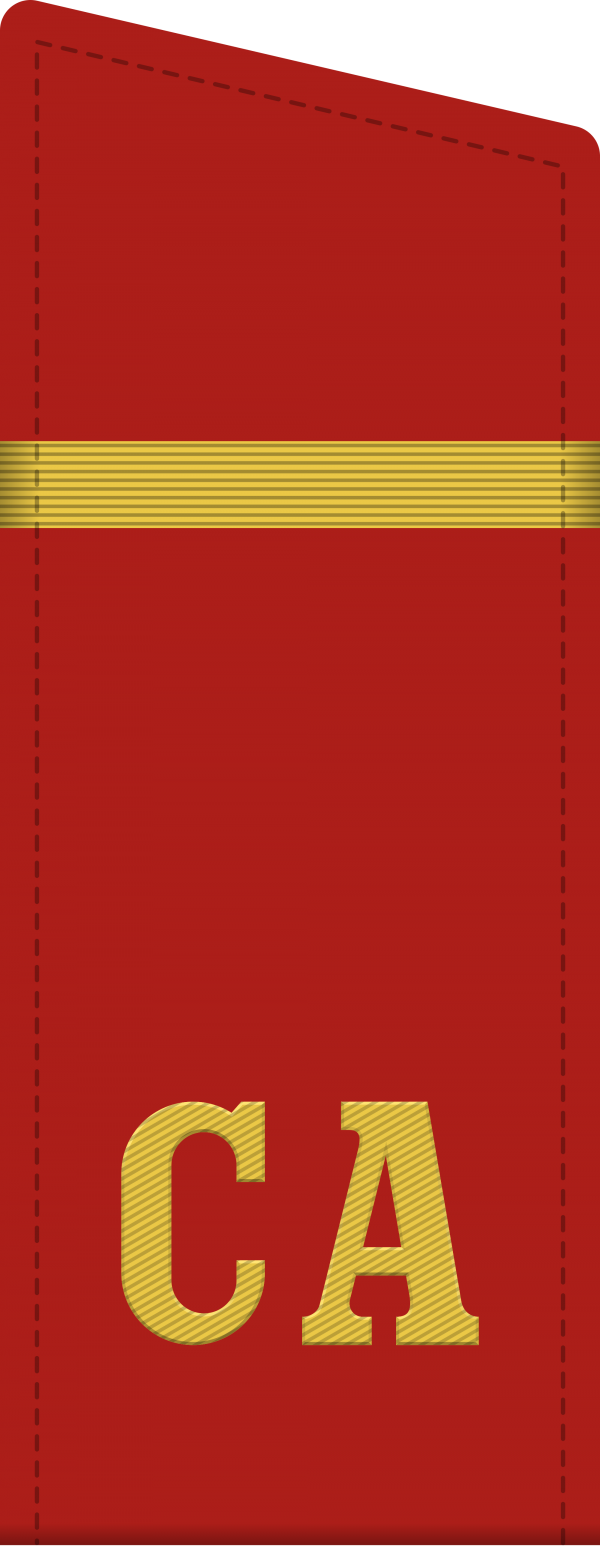 Советская армия - Погоны, Шевроны (нарукавные знаки). Знаки на воротнике (236 фото)