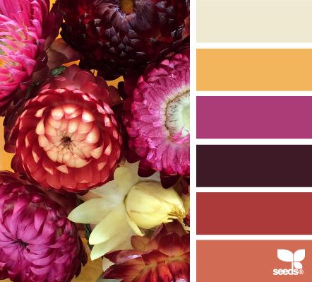 Сочетание цветов   Color combination part 15 (100 фото)