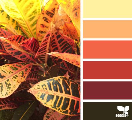 Сочетание цветов | Color combination part 15 (100 фото)