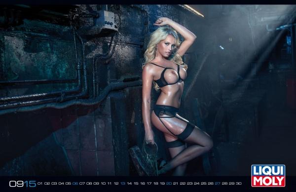 Liqui Moly - Calendar 2015 (14 фото)