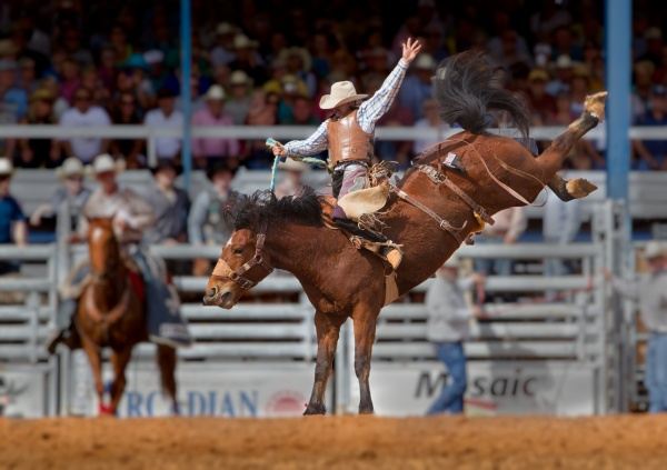 Stock Photo - Rodeo, 25xJPGs (25 фото)